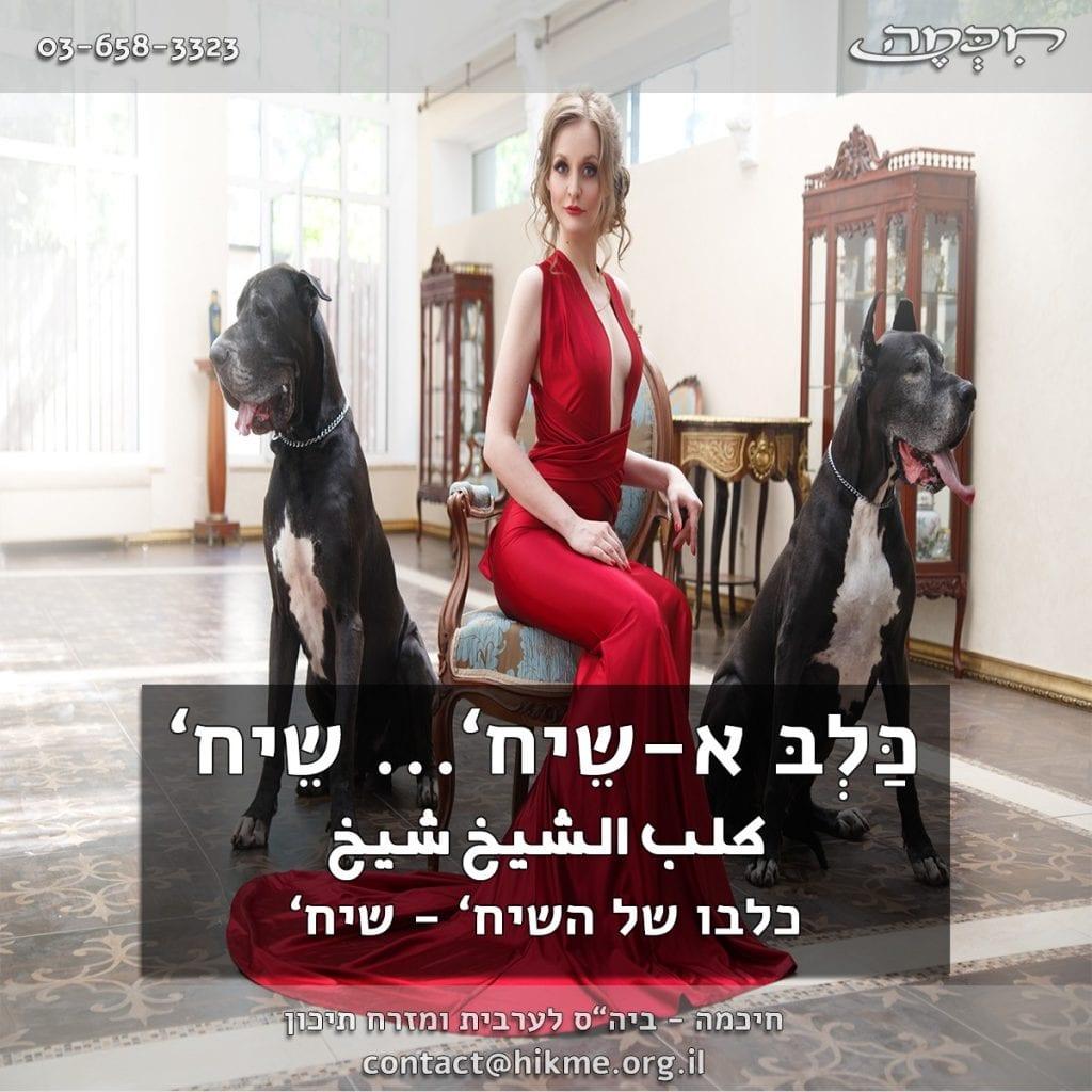 כלבו-של-השיח פתגמים בערבית