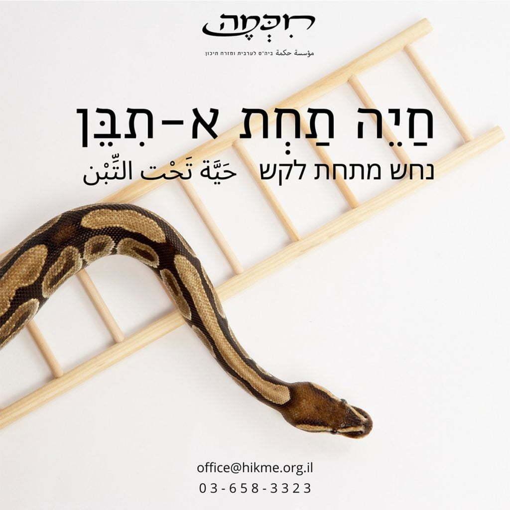 פתגמים בערבית חיכמה ביטויים בערבית מדוברת